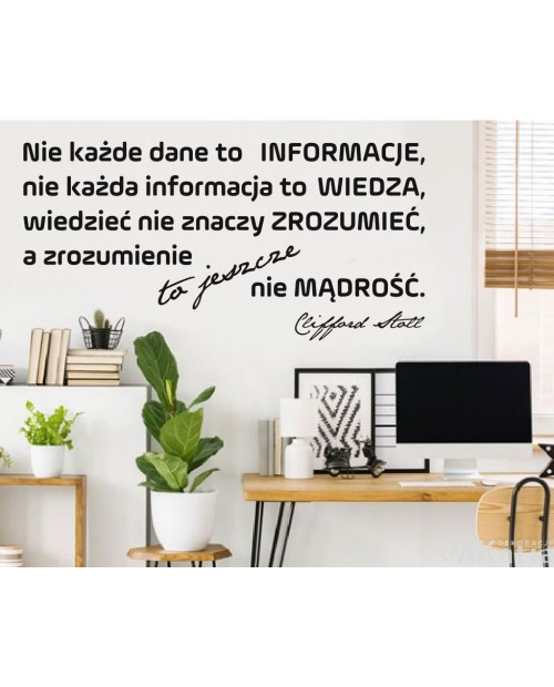 Naklejka na ścianę: Nie każde dane to informacje